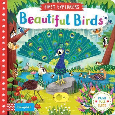 First Explorers - Beautiful Birds (1)
