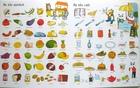 Big Book of English Words - słownik obrazkowy dla dzieci (5)