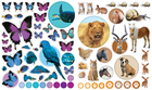 Eyelike Stickers: Animals (2)