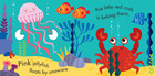 Crab - A snappy book of colours! (2)