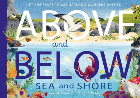 Above and Below: Sea and Shore (1)