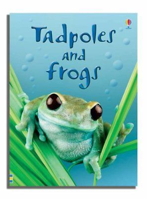 Tadpoles and Frogs (1)