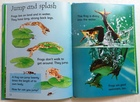Tadpoles and Frogs (3)