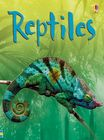 Reptiles (1)