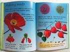 How Flowers Grow (3)