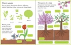My First Book About How Things Grow (3)